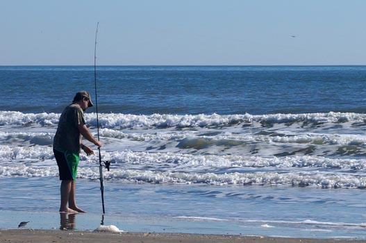 Fishing friends of galveston island state park for Island beach state park fishing